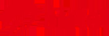 Bharati Tele- Ventures Limited (Airtel)